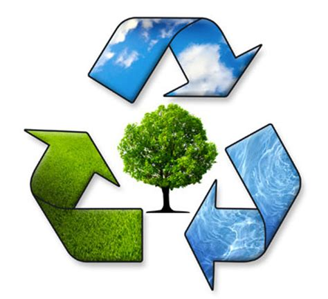 The importance of Waste Management and Recycling